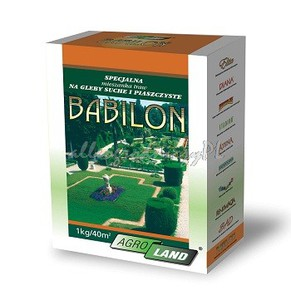 TRAWA BABILON 0,5kg nasiona NA TERENY SUCHE I PIASZCZYSTE