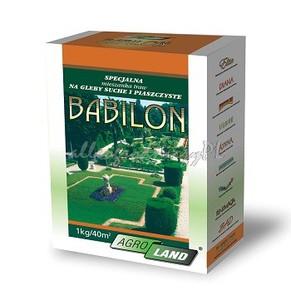 TRAWA BABILON 1kg nasiona AGROLAND NA TERENY SUCHE I PIASZCZYSTE