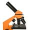 Levenhuk 2L NG Microscope Pomarańczowy