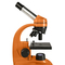 Levenhuk 50L NG Microscope Pomarańczowy
