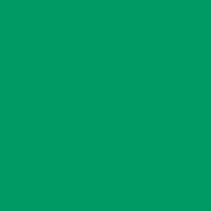 Apple Green - Tło Kartonowe 2,7 x 11m Colorama
