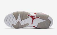Damskie buty NIKE AIR JORDAN 6 Alternate 384664-113