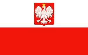 Bandera Polski 30x50