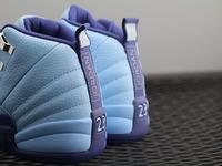 "NIKE AIR JORDAN XII 12 ""Purple Dust"" 510815-418"