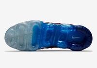 Buty męskie Nike Air Vapormax Plus 924453-601