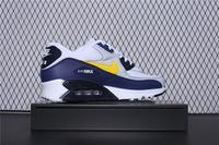Buty damskie Nike Air Max 90 Essential AJ1285-101